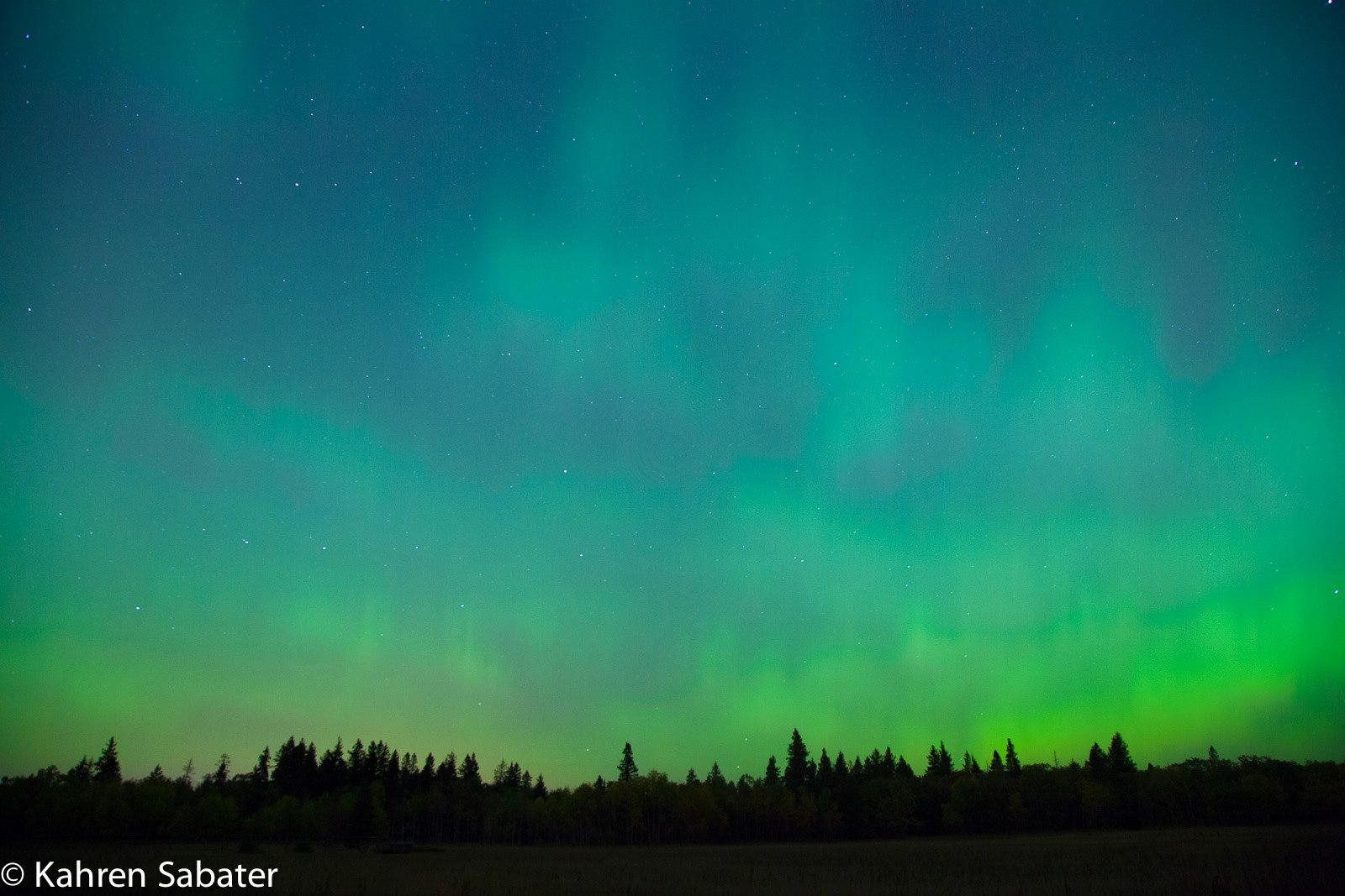 Aurora Borealis. From Birds Hill Park, Manitoba by Kahren Sabater