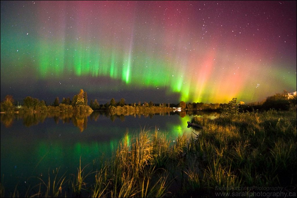 Aurora Borealis. From Sturgeon Falls, Ontario, Canada by Sarah Furchner Photography
