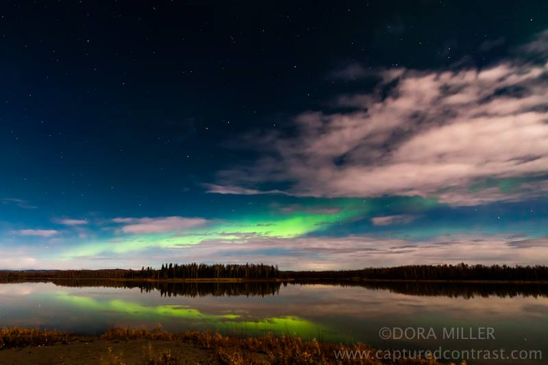 Aurora Borealis. From Fairbanks, Alaska by Dora Miller